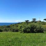 The view at the highest point of Tiritiri Matangi