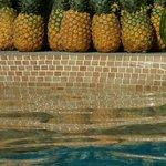 Poolside Pineapples