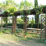 Foto de Agriturismo Il Catrino