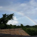 Spotted Rainbow from our Jacuzzi Terrace