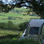 Jammy Camping