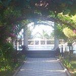 walkway through pergola to pool and restaurant