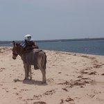 transport, on the beach