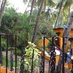 Photo of Palm Beach Lifestyle Resort