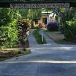 Hotel La Rosa de America entrance
