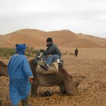 desert camel trek tours
