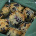 Maine blueberry muffins