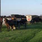 Amish Produce Auction open for tourism.
