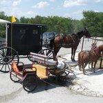 Enjoy the quaint Amish culture and unique photo opportunities.