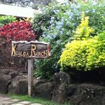 ‪Kualoa Ranch Restaurant‬