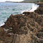 lava rock shore line