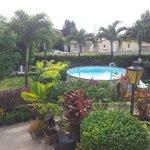 Lush garden & pool