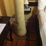 Il tronco della palma che esce dal pavimento