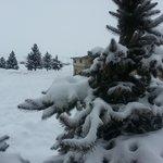 Let it snow!!!