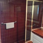 Cute, red tile shower stall.