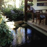 Lago com peixinhos em volta do restaurante, lindo!