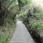 acesso para a Praia do Rosa - SC