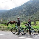 Scenary along the bike ride