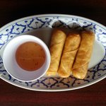 Veggies Egg Roll with house made sweet and sour sauce