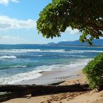 Gorgeous beach view