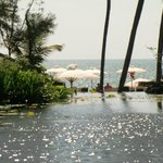 Lagune, Pool und Meer