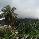 вид с балкона (белые это облака из которых льет дождь)