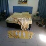 la cama..la otra cama era de madera con una colchoneta