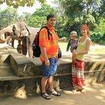 Живое общение со слонами