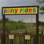 Pony rides (Easter to October)
