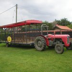 Tractor and trailer rides ( Easter to October)