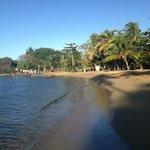 The beach at the Marina