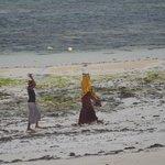 Donne Masai in spiaggia