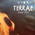 Bild från Terrae