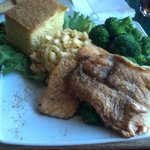 Grilled Salmon with Mac n Cheese and Broccoli