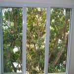 finestra sulle scale