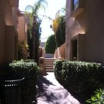 walkways through casitas