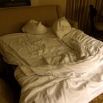 """Their Parlour room bed. """"It is considered an upgrade!"""""""