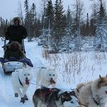 Dog Sledding with Jenafor (Jennifer)