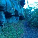 some of druids rocks