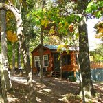 Foto de Rim Rock's Dogwood Cabins