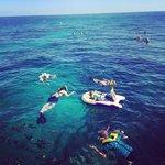 My family enjoying the reef