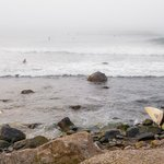 Narragansett is the heart of New England surfing