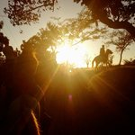 Horse Riding on the Farm