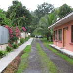 Hotel driveway- lush gardens