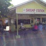The Shrimp Station