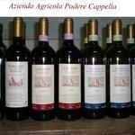 I nostri prodotti vini