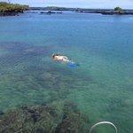 snorkeling Concha Perla2