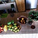 Früchte-Kräuter