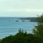 Enjoy scenic walks in and around Inverloch