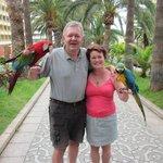 papegøjerne fra hotellet
